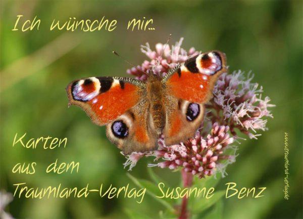 Wunschkarte mit Schmetterling